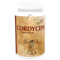 CORDYCEPS Extrakt 500 mg Kapseln 100
