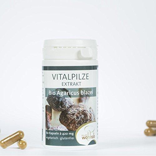 Agaricus blazei (ABM) Vitalpilz Extrakt Bio – 60 Kapseln