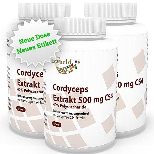 Cordyceps Extrakt 500mg CS4 300 Kapseln Apotheken Raupenpilz 3er Pack