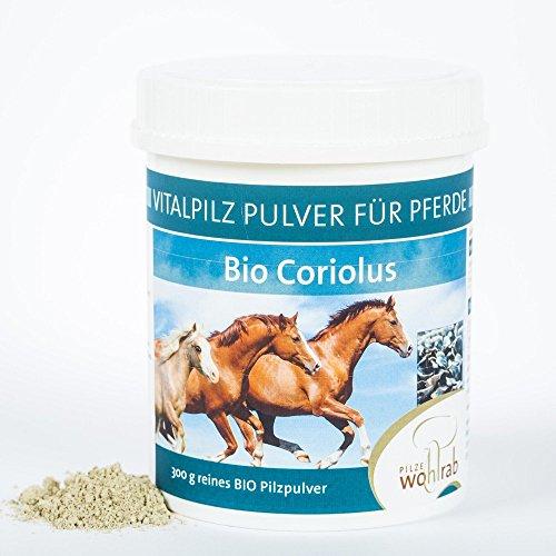 Coriolus Bio Vitalpilz Pulver für Pferde 300g Pilze Wohlrab